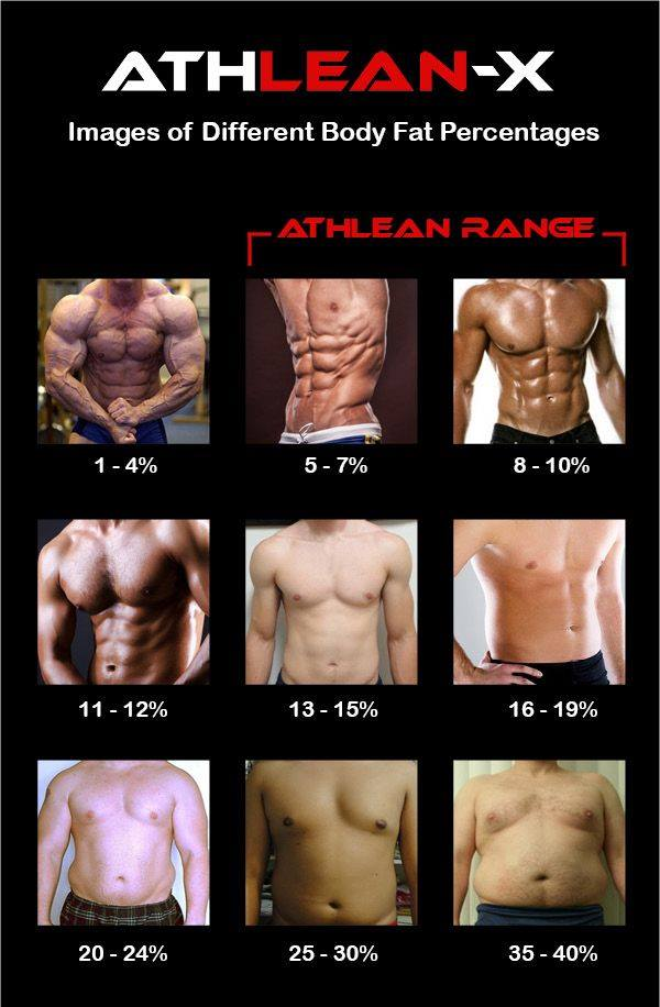 different body fat percentages for men and women