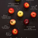 Helpful Guide To Apples
